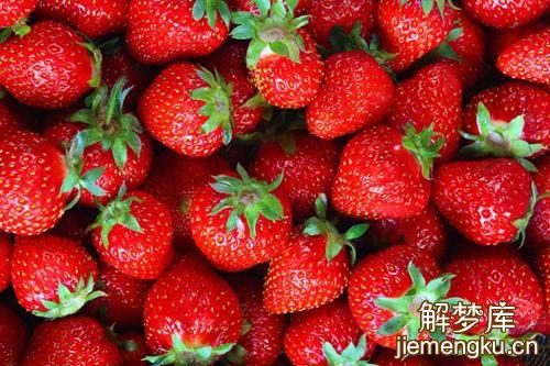 梦见很多草莓