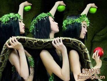 梦见蛇被打死